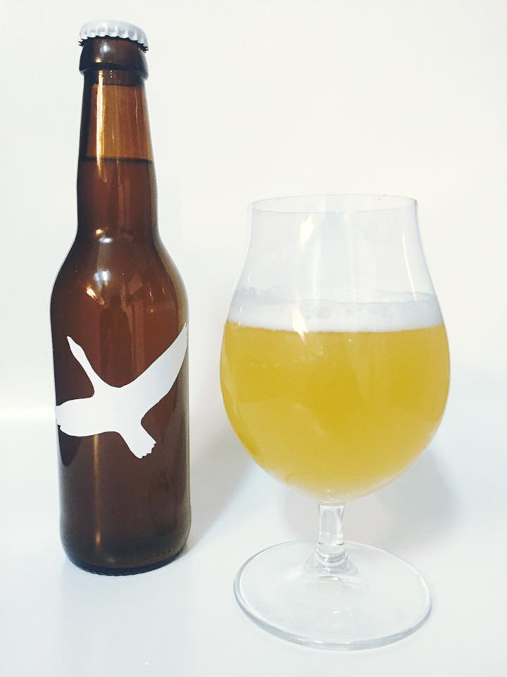 Mango Ginger Gose by Anders Rosdahl
